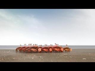 Commercial De Lijn - Sound design by Andrey Rossi