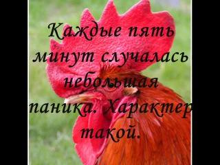 Петушиная мельница- повесть Мустая Карима