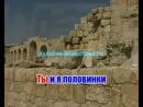 Наталья  Ветлицкая  Половинки Караоке