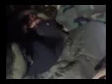 111  Поиск видеозаписей по запросу ДРГ