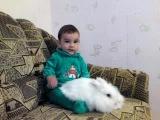 Маленький мальчик Эльдарчик и белый пушистый кролик Беляш