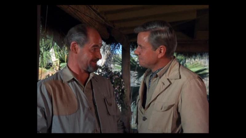 Дактари Daktari США 1966 1 сезон 13 серия
