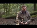Экхарт Толле. Прогулка в лесу.