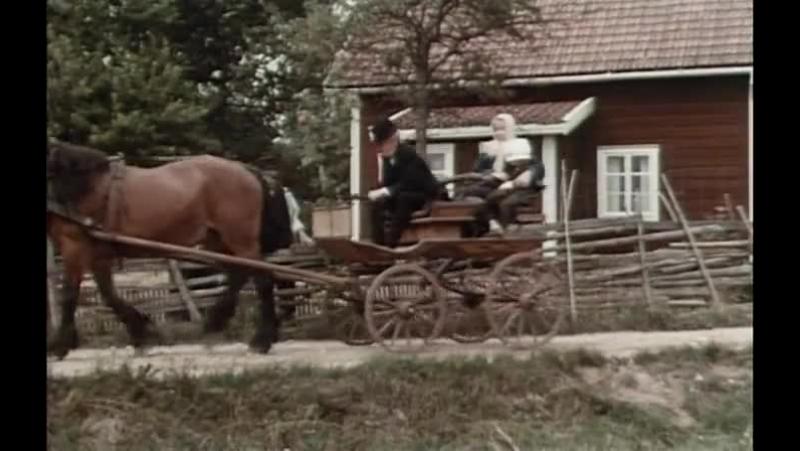 Эмиль из Лённеберги - 2 серия - Как Эмиль сунул голову в супницу