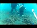 SCUBA DIVING IN BLACK SEA - YALTA-2014