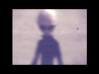 Реальные инопланетяне живая съемка