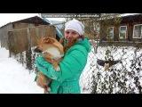 Зима ...19.10.2014 г. под музыку Алсу и Лев Лещенко - Такого снегопада,такого снегопада. Picrolla
