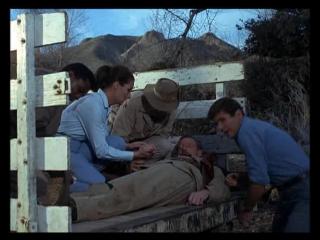 Дактари / Daktari. (США) (1966) (1 сезон ,12 серия)