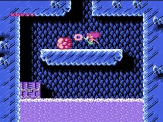 The Little MERMAID NES