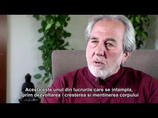 Bruce Lipton - Iubire versus frică pentru sănătate