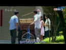 [AS-akura] Dandelion Love  Любовь одуванчика (240)