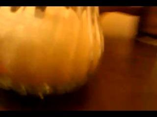 Mrfofkin, glud1, pandaren на геймсконе или в суши баре.