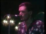 FALCO - Der Kommissar (1981) (Live 1985)