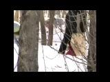 Нарезки видео Самые угарные приколы про ДЕВУШЕК