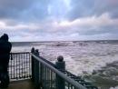 Мы съездили в Светлогорск, увидели Балтийское море