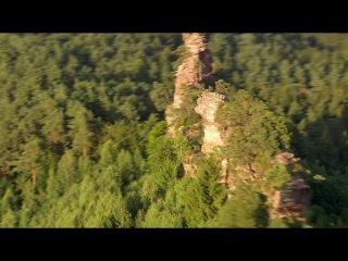Дикая природа Германии Леса Пфальца