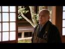 Zen Gärten - Erleuchtung in Stein