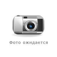 Гриша Ротарь