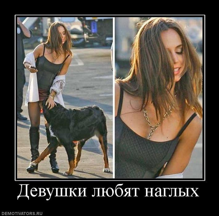 https://pp.vk.me/c5506/u125108129/-5/y_4302b626.jpg