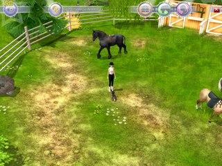 Java игры с лошадьми