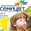 """Центр развития семьи """"Семицвет"""""""