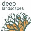 Deep Landscapes . Пространственная фотоинсталлляция