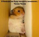 Фото Timofey Voron №2