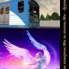 Мир железных дорог
