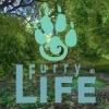Furry Life (18+)