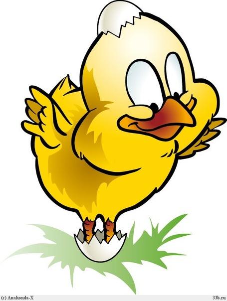 Цыпленок рисунок прикольный, надписью рамзан красивые