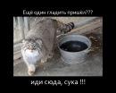 Фото Андрея Петухова №5