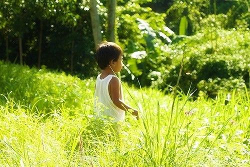 малыш в лесу слушать