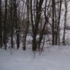 БАРАНОВО БОРИСОГЛЕБСКИЙ РАЙон Ярославская област