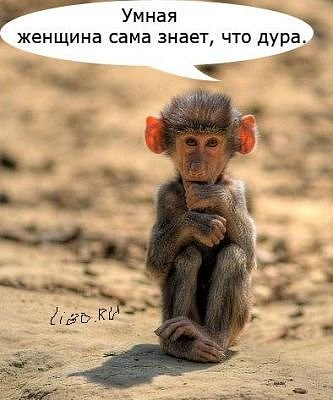 http://cs570.vkontakte.ru/u33414013/106734366/x_4df2fc5a.jpg