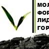 Молодежный Форум лидеров горного дела