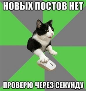 https://pp.vk.me/c5712/u129513806/136239173/x_9fb02929.jpg