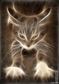 Custom Cat, 7 января 1993, Москва, id16074657