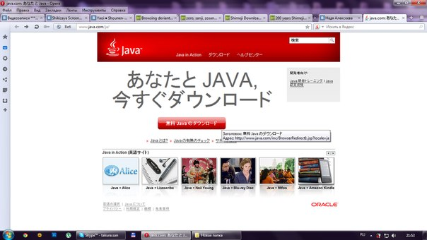 java на fly ds120