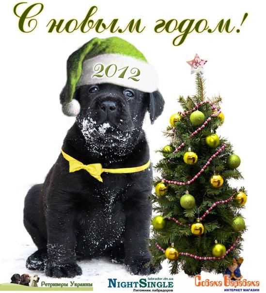 http://cs5747.vkontakte.ru/u122808835/142855793/x_ec924c2b.jpg