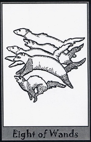 Колода карт Таро (Хорьки) X_2776fca1