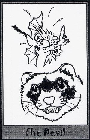 Колода карт Таро (Хорьки) X_860db637