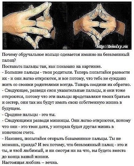 Ксения Петрова |