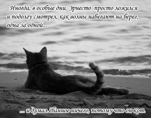 http://cs5758.userapi.com/u2525206/154218927/x_1604dffb.jpg