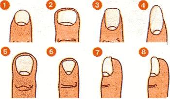 Короткие ногти необгрызенные иметь