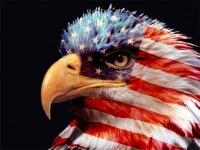 Можно ли с земли увидеть американский флаг на луне? - есть ответ.