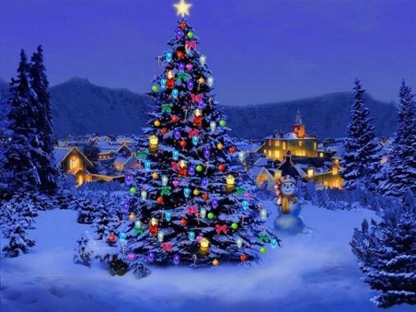 Сегодня на площади Юности установят «главную новогоднюю» ель.