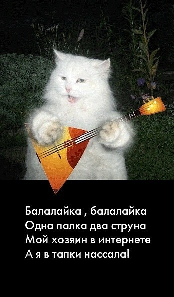 http://cs5773.userapi.com/u137086191/-14/x_8b20e059.jpg
