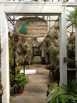 Вход в Shelldance Orchids Gardens.