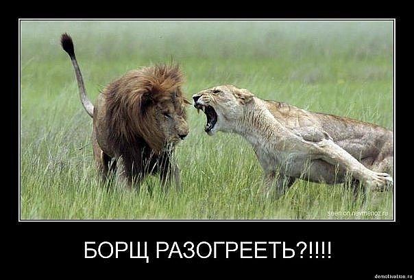 http://cs578.vkontakte.ru/u59711412/100615826/x_9dddeb40.jpg
