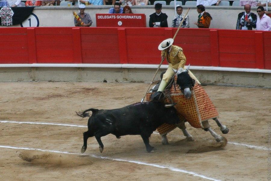 Пикадор коррида corrida